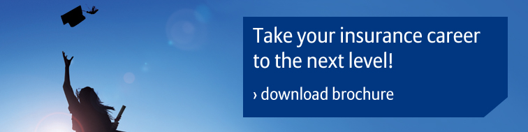 Download the Allianz Scholarship Programme brochure
